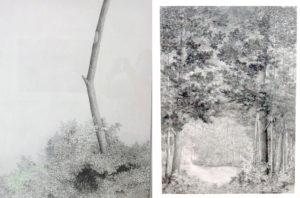 Werke von Fritz Guggisberg 2021 in der Galerie Rössli, Balsthal. (Foto: Eva Buhrfeind)